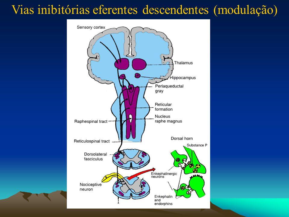 DOR NOCICEPTIVA NEUROPÁTICA (lesão ou inflamação)(Função patológica do Sistema Nervoso)