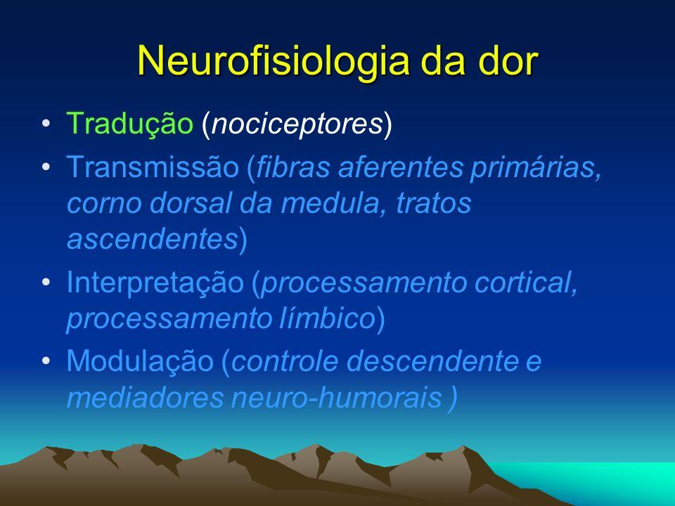 Nervo espinhal e diferentes fibras aferentes, Bonica 1990