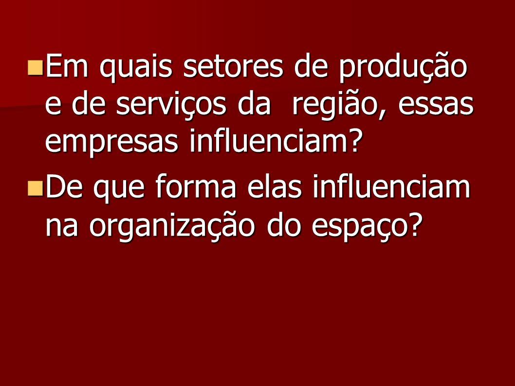 Em quais setores de produção e de serviços da região, essas empresas influenciam.