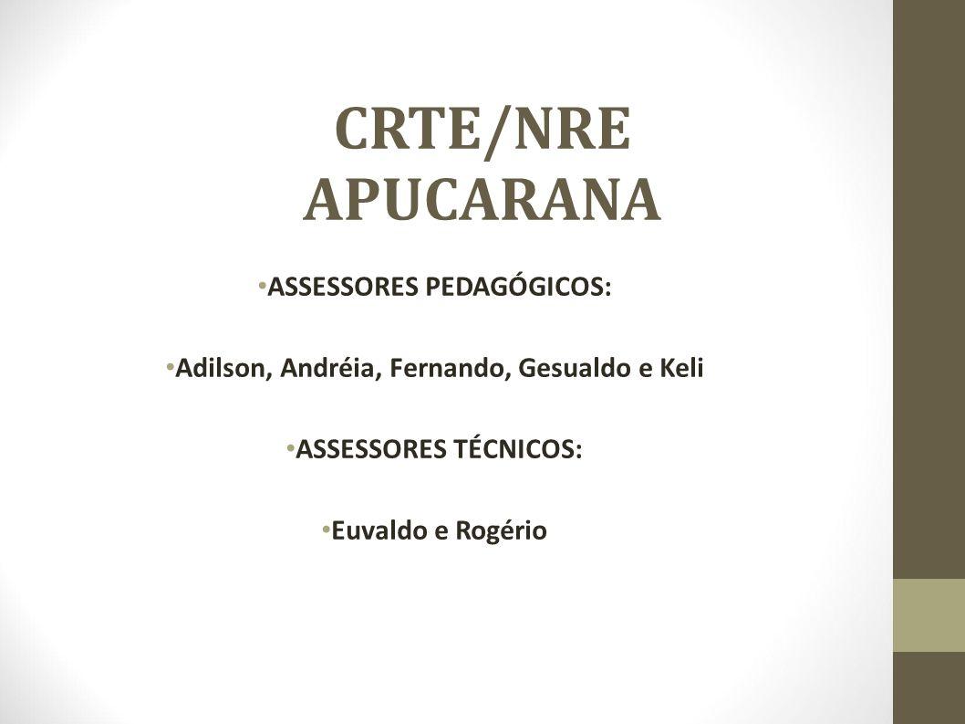 Assessorias Professores, gestores, equipe técnico-pedagógica e administrativa (AdmLocais).