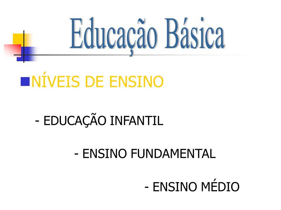 NÍVEIS DE ENSINO - EDUCAÇÃO INFANTIL - ENSINO FUNDAMENTAL - ENSINO MÉDIO