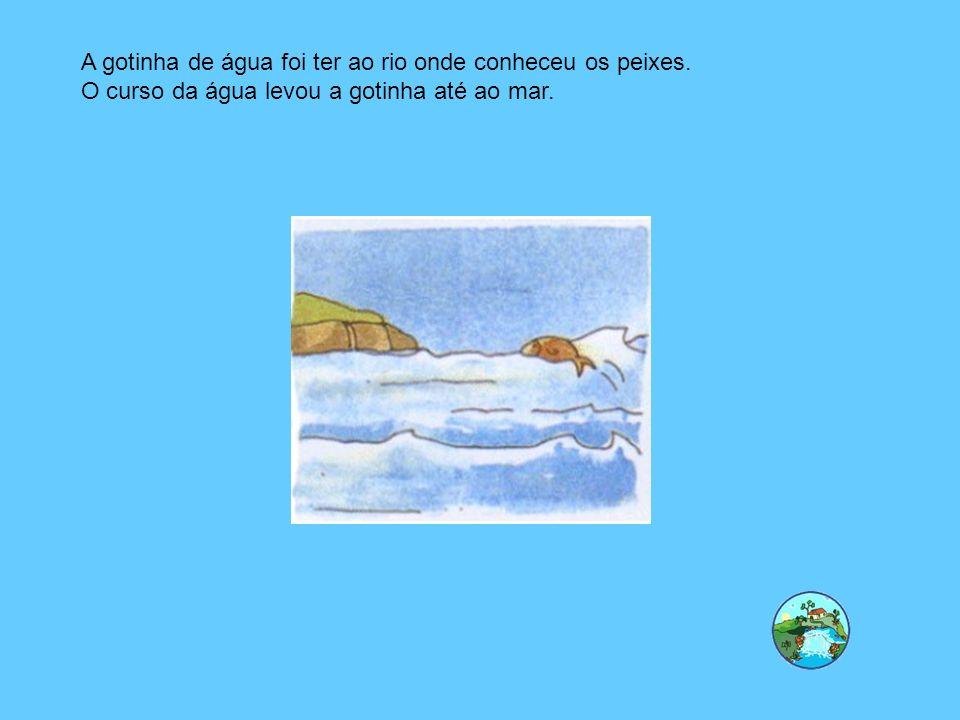 A gotinha de água foi ter ao rio onde conheceu os peixes. O curso da água levou a gotinha até ao mar.