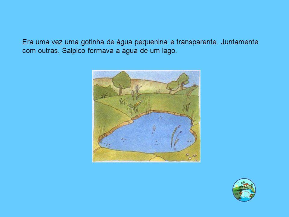 O que é a evaporação.É a passagem da água do estado líquido ao estado gasoso (vapor de água).