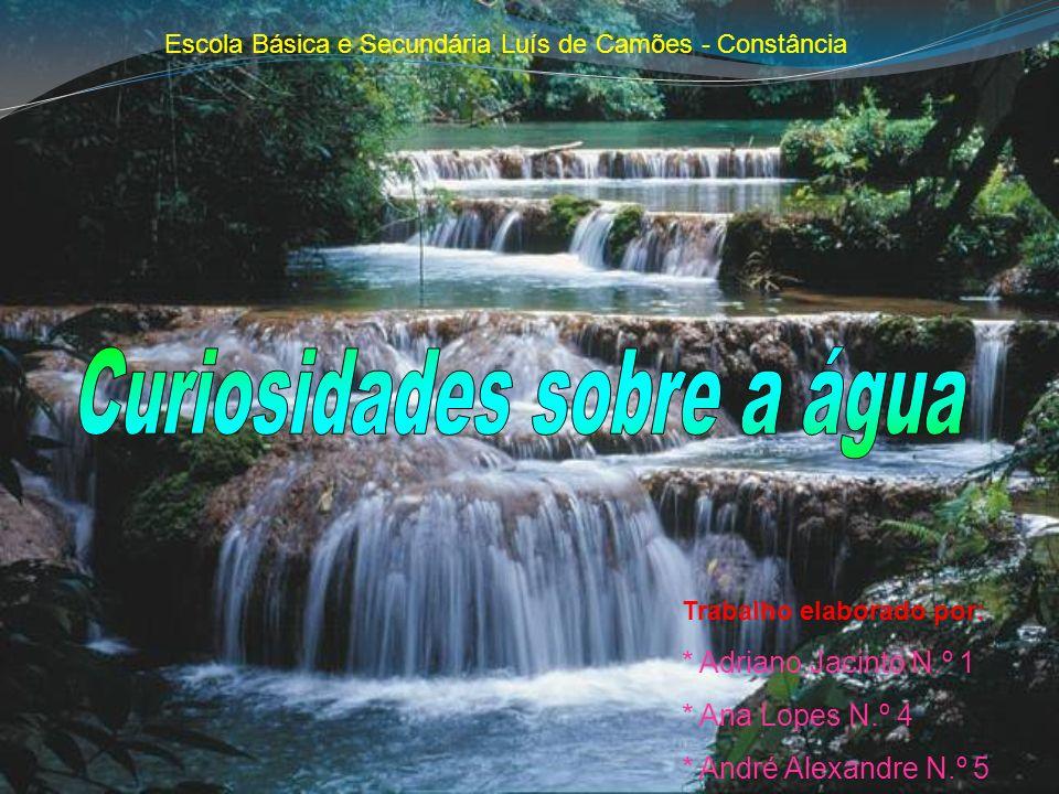 Trabalho elaborado por: * Adriano Jacinto N.º 1 * Ana Lopes N.º 4 * André Alexandre N.º 5 Escola Básica e Secundária Luís de Camões - Constância