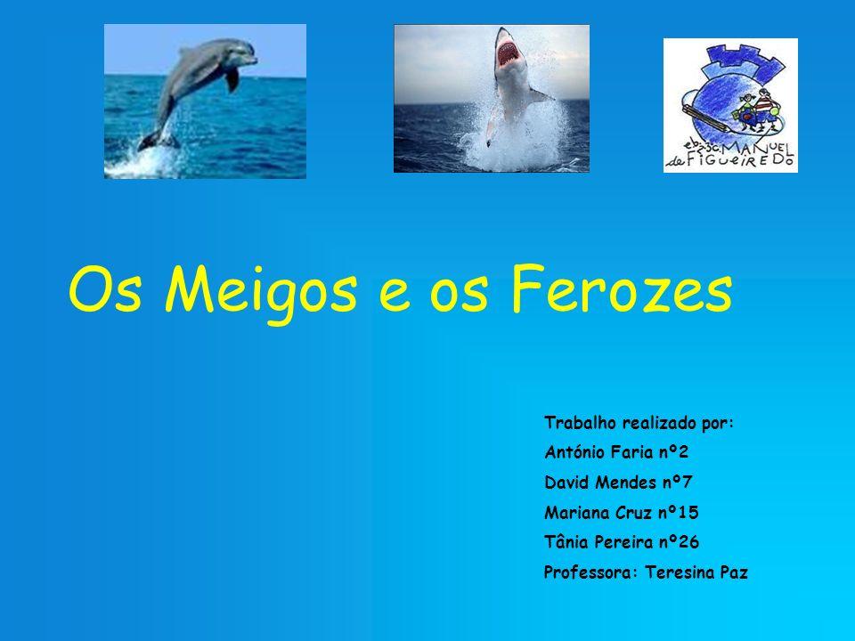 Os Meigos e os Ferozes Trabalho realizado por: António Faria nº2 David Mendes nº7 Mariana Cruz nº15 Tânia Pereira nº26 Professora: Teresina Paz