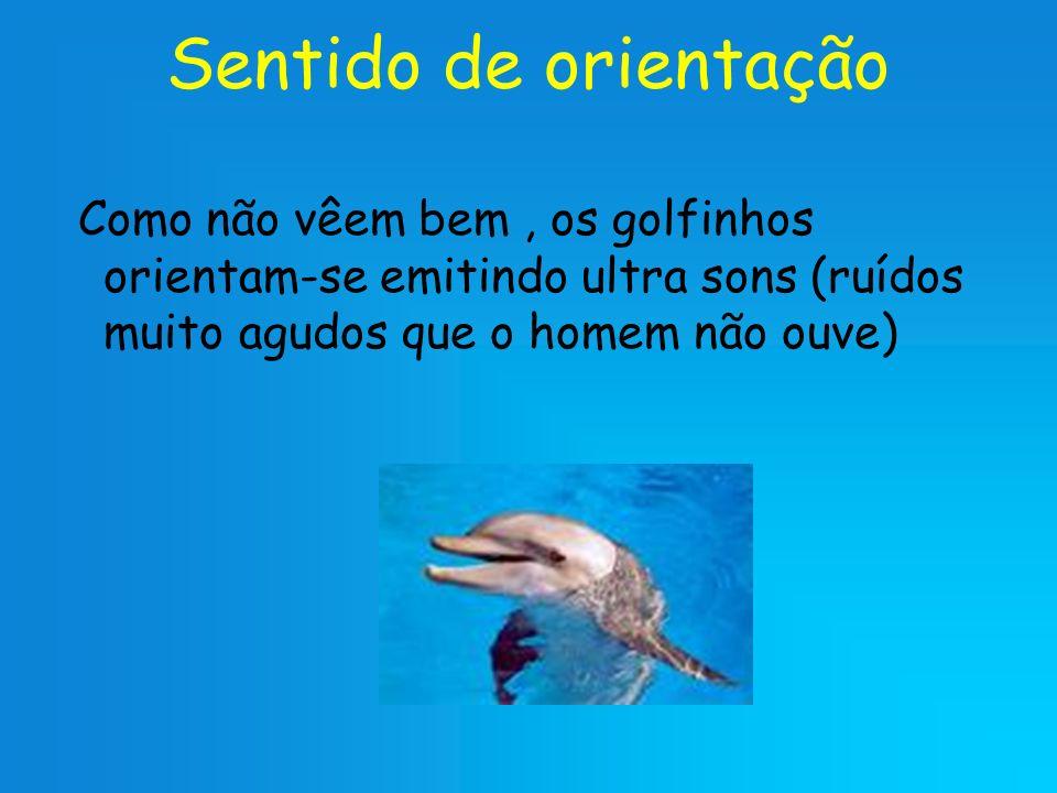Sentido de orientação Como não vêem bem, os golfinhos orientam-se emitindo ultra sons (ruídos muito agudos que o homem não ouve)