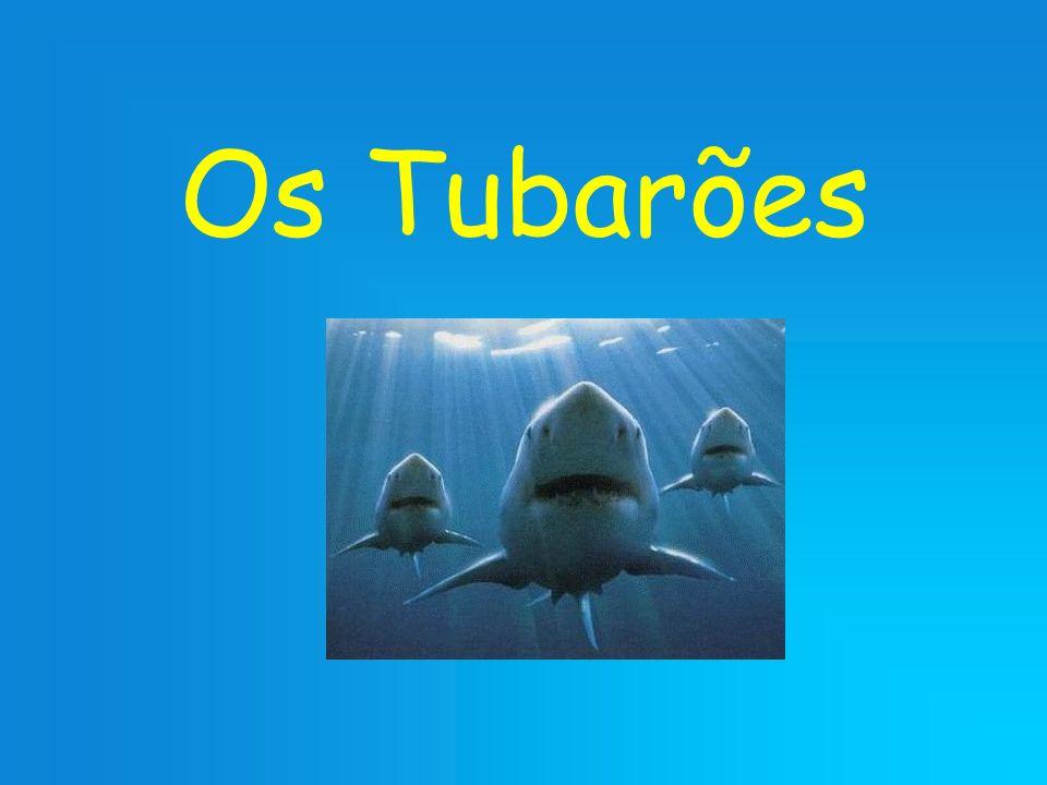 Os Tubarões