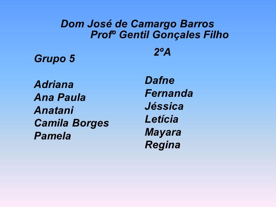 Grupo 5 Adriana Ana Paula Anatani Camila Borges Pamela Dafne Fernanda Jéssica Letícia Mayara Regina 2ºA Dom José de Camargo Barros Profº Gentil Gonçal