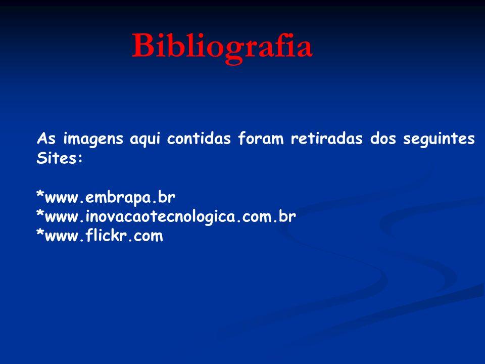 Bibliografia As imagens aqui contidas foram retiradas dos seguintes Sites: *www.embrapa.br *www.inovacaotecnologica.com.br *www.flickr.com