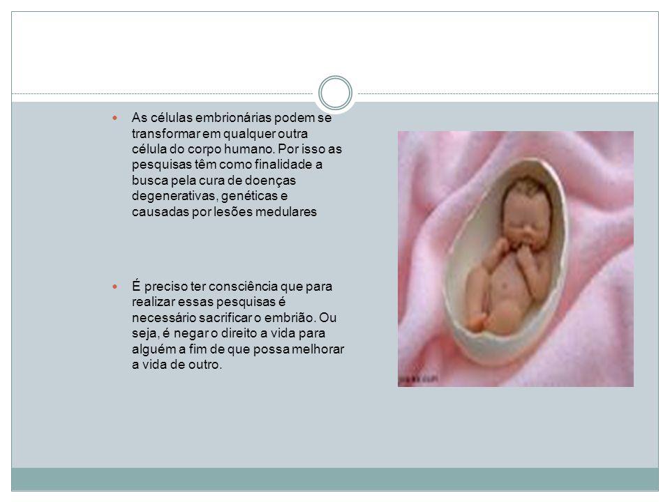 Já se pode escolher o sexo dos bebês e selecionar embriões sem distúrbios graves.