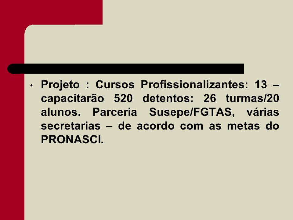 Projeto : Cursos Profissionalizantes: 13 – capacitarão 520 detentos: 26 turmas/20 alunos. Parceria Susepe/FGTAS, várias secretarias – de acordo com as