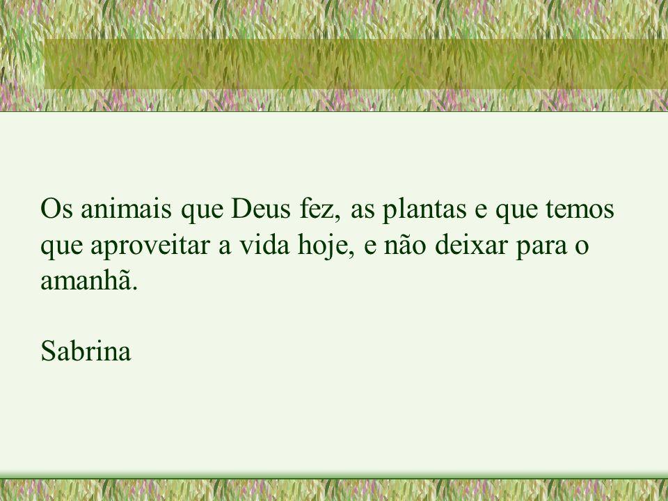Os animais que Deus fez, as plantas e que temos que aproveitar a vida hoje, e não deixar para o amanhã. Sabrina