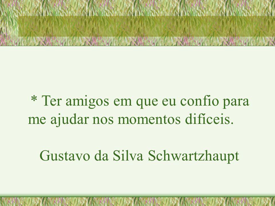 * Ter amigos em que eu confio para me ajudar nos momentos difíceis. Gustavo da Silva Schwartzhaupt