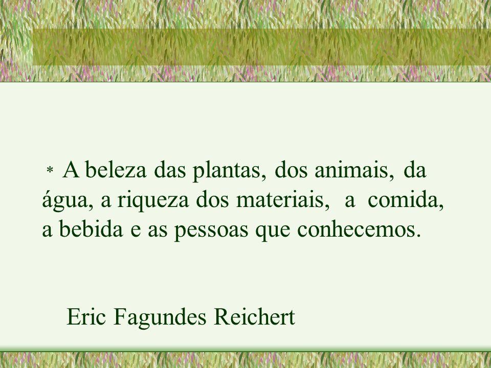 * A beleza das plantas, dos animais, da água, a riqueza dos materiais, a comida, a bebida e as pessoas que conhecemos. Eric Fagundes Reichert