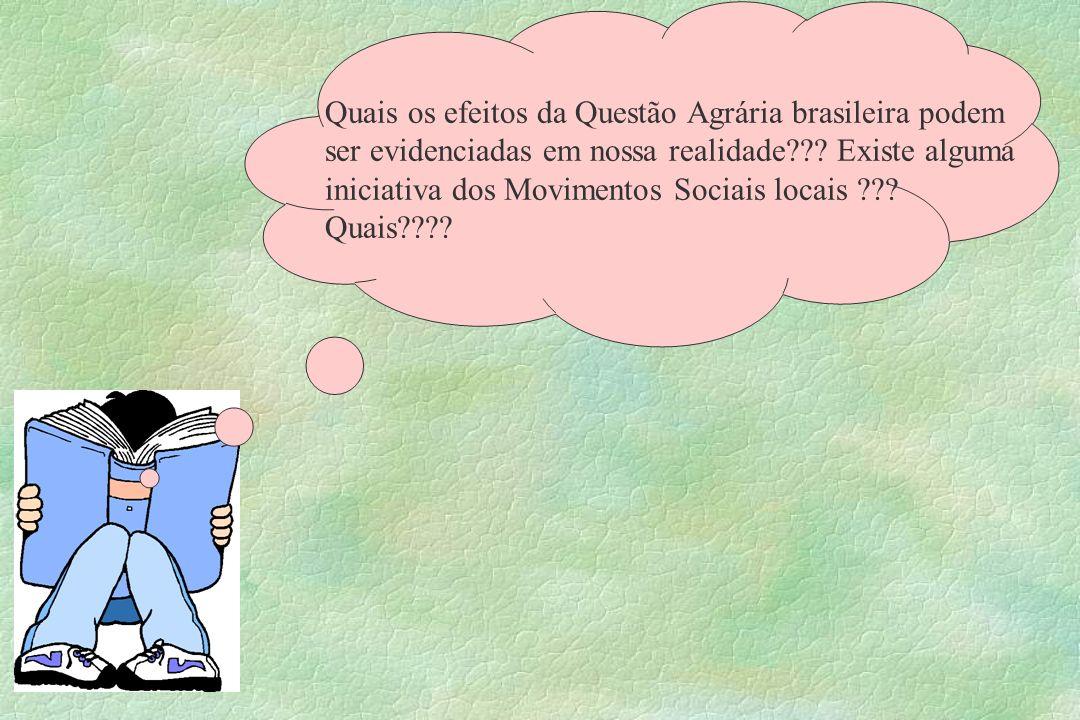 Quais os efeitos da Questão Agrária brasileira podem ser evidenciadas em nossa realidade??? Existe alguma iniciativa dos Movimentos Sociais locais ???