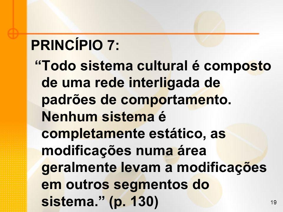 19 PRINCÍPIO 7: Todo sistema cultural é composto de uma rede interligada de padrões de comportamento. Nenhum sistema é completamente estático, as modi