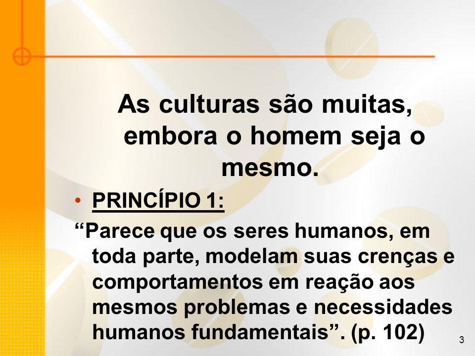 3 As culturas são muitas, embora o homem seja o mesmo. PRINCÍPIO 1: Parece que os seres humanos, em toda parte, modelam suas crenças e comportamentos