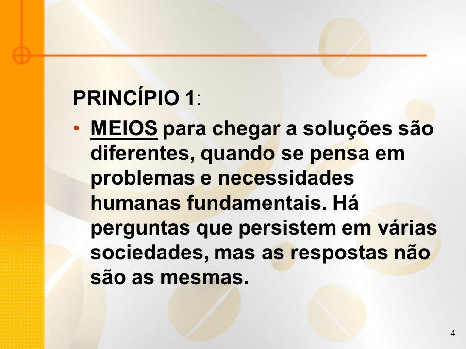 4 PRINCÍPIO 1: MEIOS para chegar a soluções são diferentes, quando se pensa em problemas e necessidades humanas fundamentais. Há perguntas que persist