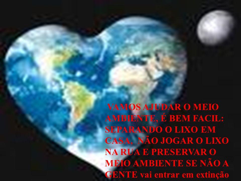 Nossa resposta à Terra: Guilherme e Felipe