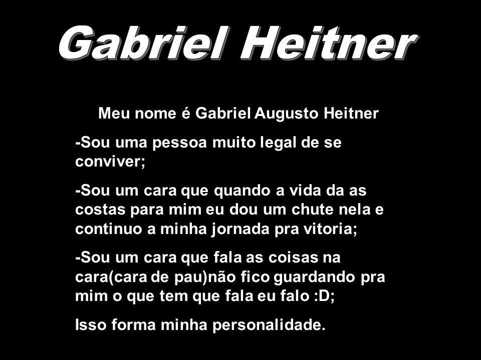 Meu nome é Gabriel Augusto Heitner -Sou uma pessoa muito legal de se conviver; -Sou um cara que quando a vida da as costas para mim eu dou um chute ne