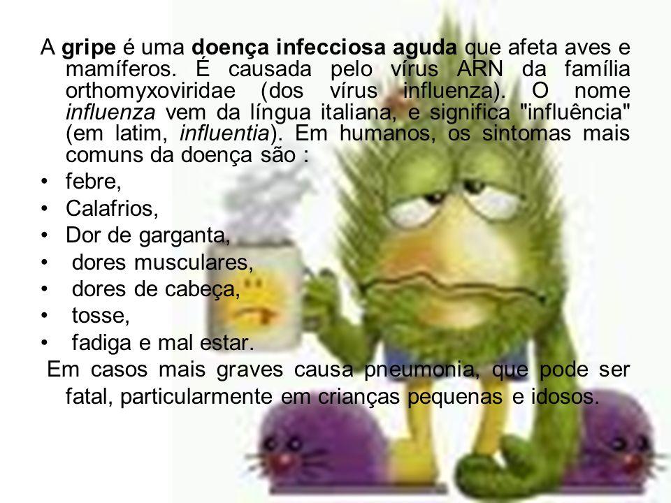 A gripe é uma doença infecciosa aguda que afeta aves e mamíferos. É causada pelo vírus ARN da família orthomyxoviridae (dos vírus influenza). O nome i