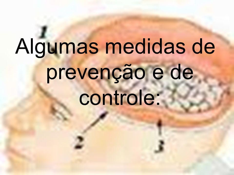 Algumas medidas de prevenção e de controle: