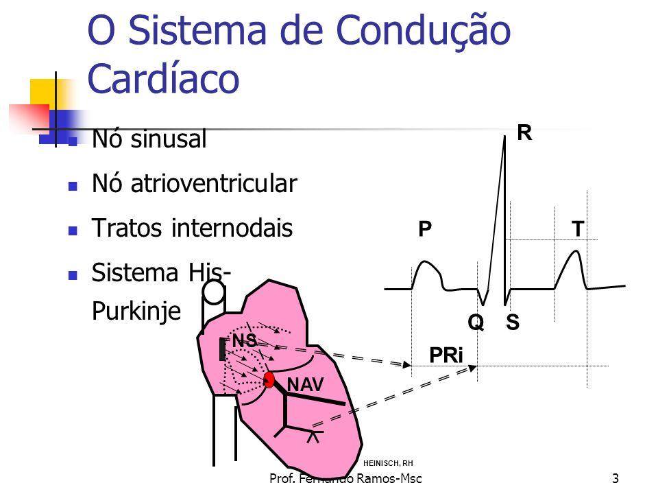 Prof. Fernando Ramos-Msc3 O Sistema de Condução Cardíaco Nó sinusal Nó atrioventricular Tratos internodais Sistema His- Purkinje NS NAV P R QS T PRi H