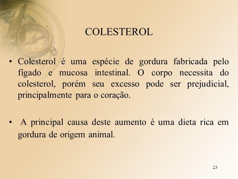 23 COLESTEROL Colesterol é uma espécie de gordura fabricada pelo fígado e mucosa intestinal.
