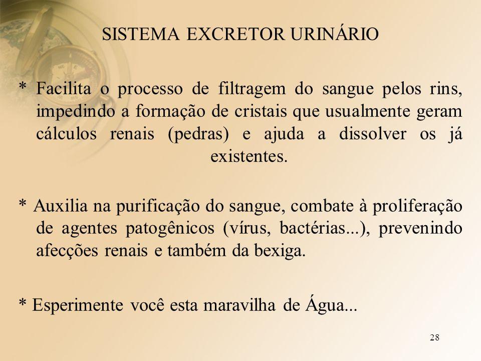 28 SISTEMA EXCRETOR URINÁRIO * Facilita o processo de filtragem do sangue pelos rins, impedindo a formação de cristais que usualmente geram cálculos renais (pedras) e ajuda a dissolver os já existentes.