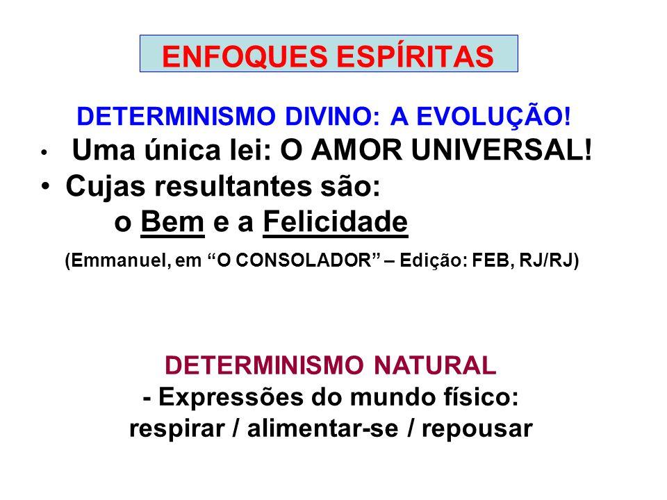 ENFOQUES ESPÍRITAS DETERMINISMO DIVINO: A EVOLUÇÃO! Uma única lei: O AMOR UNIVERSAL! Cujas resultantes são: o Bem e a Felicidade (Emmanuel, em O CONSO