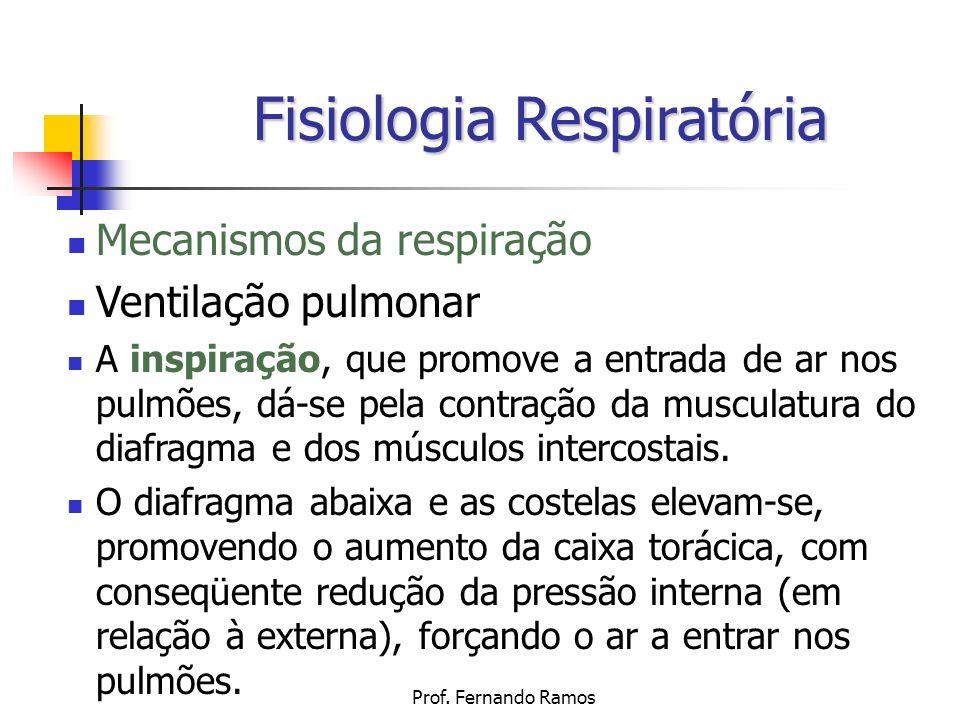 Prof. Fernando Ramos Fisiologia Respiratória Mecanismos da respiração Ventilação pulmonar A inspiração, que promove a entrada de ar nos pulmões, dá-se