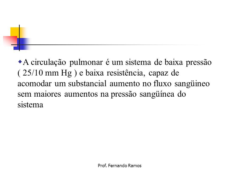 Prof. Fernando Ramos A circulação pulmonar é um sistema de baixa pressão ( 25/10 mm Hg ) e baixa resistência, capaz de acomodar um substancial aumento