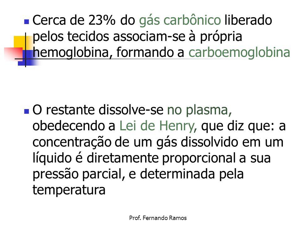 Prof. Fernando Ramos Cerca de 23% do gás carbônico liberado pelos tecidos associam-se à própria hemoglobina, formando a carboemoglobina O restante dis