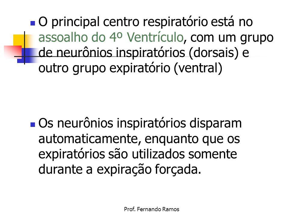 Prof. Fernando Ramos O principal centro respiratório está no assoalho do 4º Ventrículo, com um grupo de neurônios inspiratórios (dorsais) e outro grup