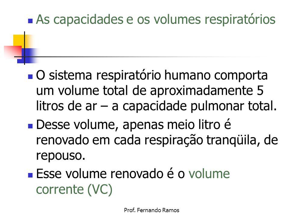 Prof. Fernando Ramos As capacidades e os volumes respiratórios O sistema respiratório humano comporta um volume total de aproximadamente 5 litros de a