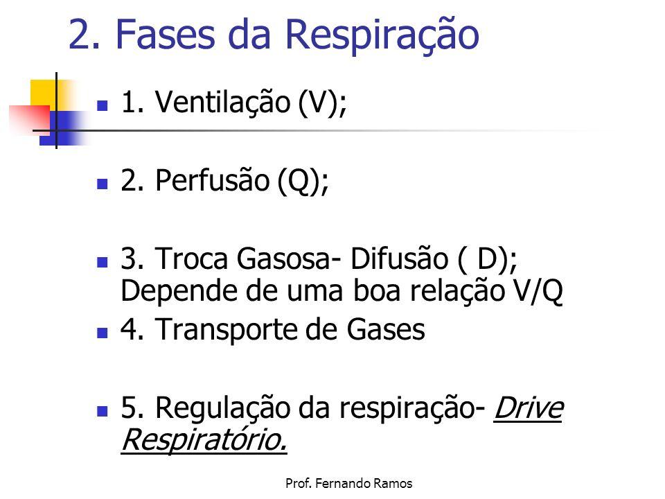 Prof. Fernando Ramos 2. Fases da Respiração 1. Ventilação (V); 2. Perfusão (Q); 3. Troca Gasosa- Difusão ( D); Depende de uma boa relação V/Q 4. Trans