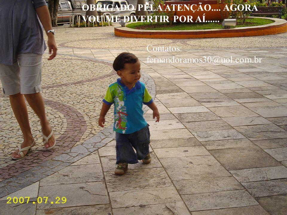 Prof. Fernando Ramos OBRIGADO PELA ATENÇÃO.... AGORA VOU ME DIVERTIR POR AÍ...... Contatos: fernandoramos30@uol.com.br