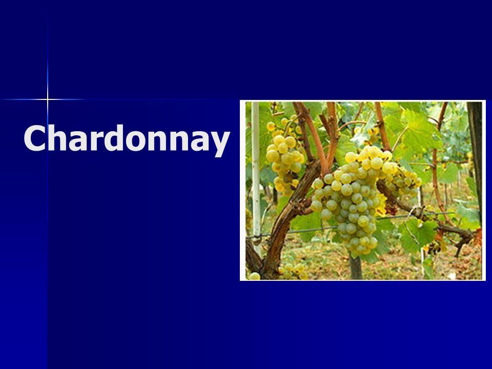 Espécie: Vitis vinifera Outros Nomes : Aubaine Beanois Melon Blanc Pinot Chardonnay Origem:Borgonha, França Cultivo:Borgonha, França Califórnia, Estados Unidos Austrália Nova Zelândia Chile África do Sul Argentina Brasil