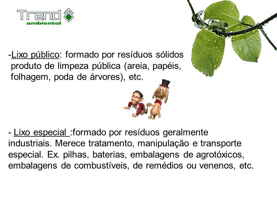 -Lixo público: formado por resíduos sólidos produto de limpeza pública (areia, papéis, folhagem, poda de árvores), etc. - Lixo especial :formado por r