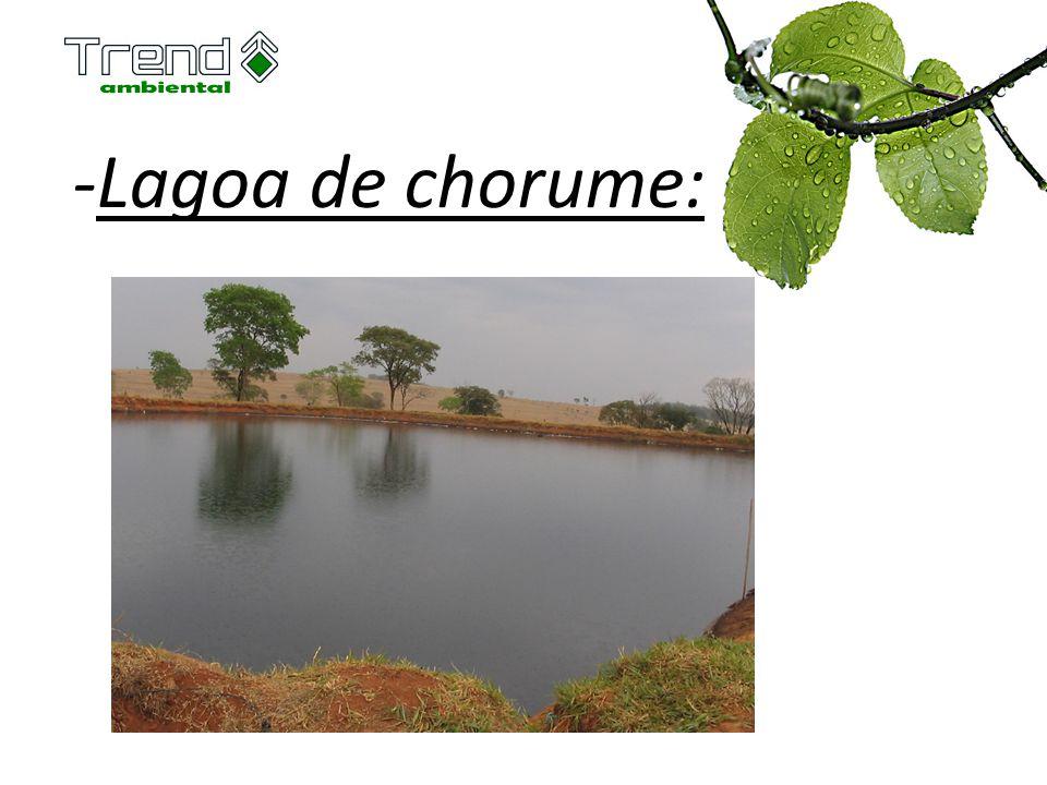 -Lagoa de chorume: