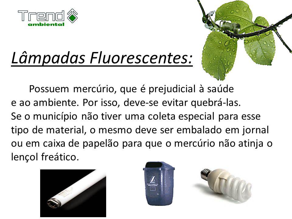 Lâmpadas Fluorescentes: Possuem mercúrio, que é prejudicial à saúde e ao ambiente. Por isso, deve-se evitar quebrá-las. Se o município não tiver uma c