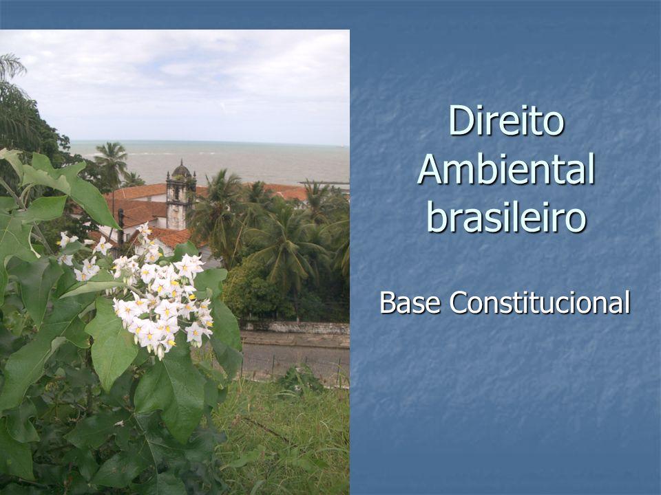 Direito Ambiental brasileiro Base Constitucional