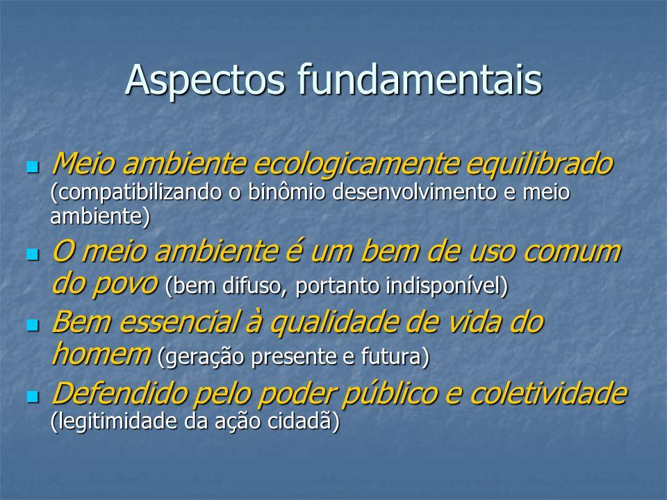 Aspectos fundamentais Meio ambiente ecologicamente equilibrado (compatibilizando o binômio desenvolvimento e meio ambiente) Meio ambiente ecologicamen