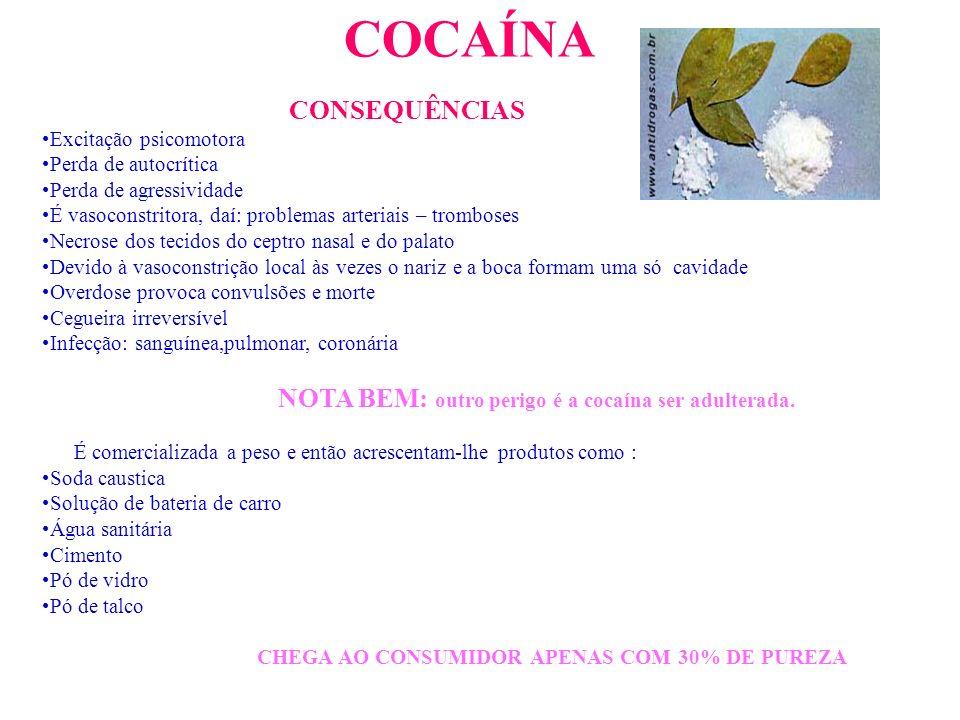 COCAÍNA Pó branco extraído das folhas de um arbusto chamado coca Há mais de 5000 anos que os Índios sul-americanos têm o hábito de mascar coca para di