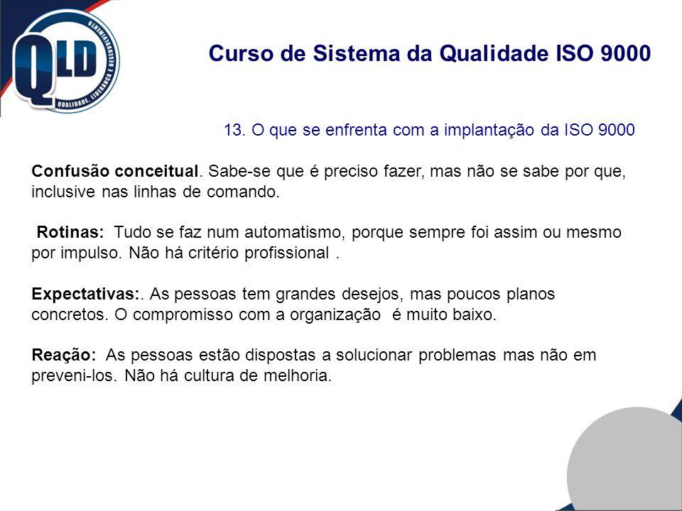 Curso de Sistema da Qualidade ISO 9000 13. O que se enfrenta com a implantação da ISO 9000 Confusão conceitual. Sabe-se que é preciso fazer, mas não s