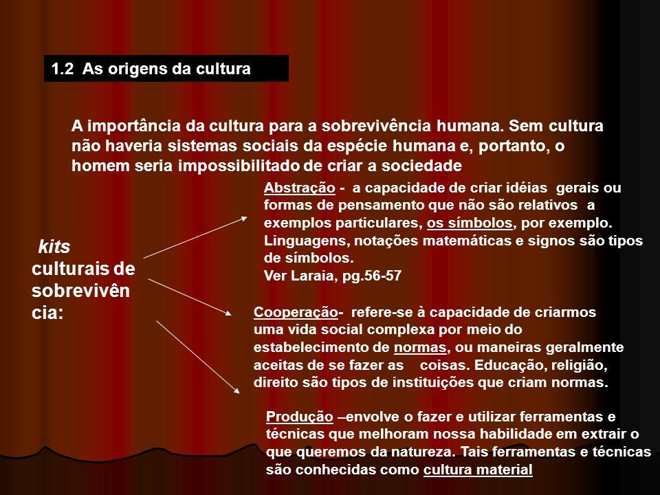 1.2 As origens da cultura A importância da cultura para a sobrevivência humana. Sem cultura não haveria sistemas sociais da espécie humana e, portanto