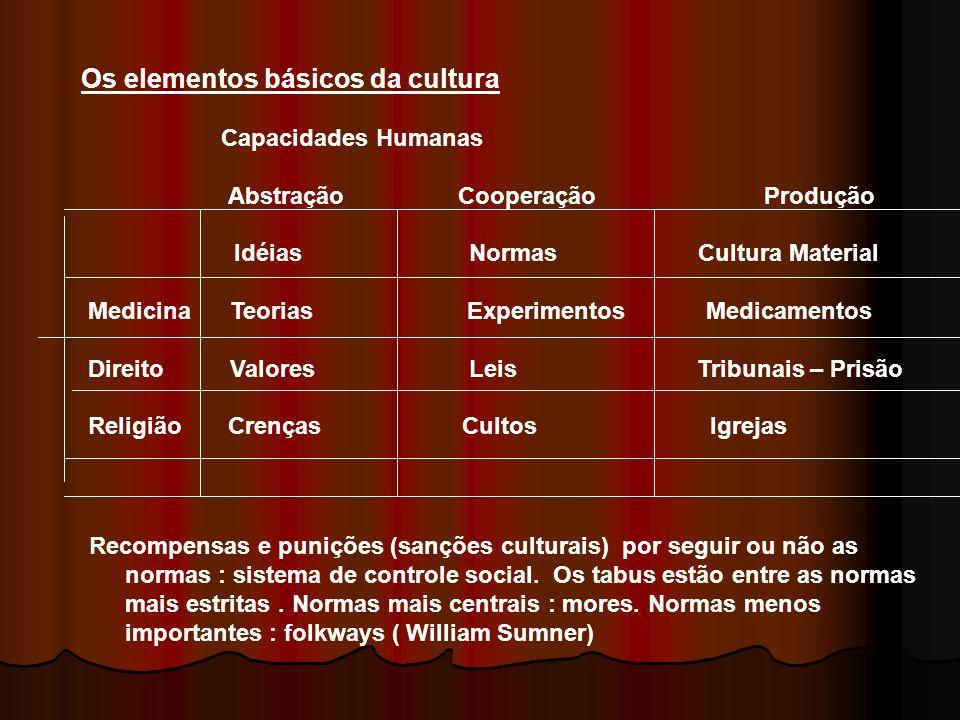 Os elementos básicos da cultura Capacidades Humanas Abstração Cooperação Produção Idéias Normas Cultura Material Medicina Teorias Experimentos Medicam
