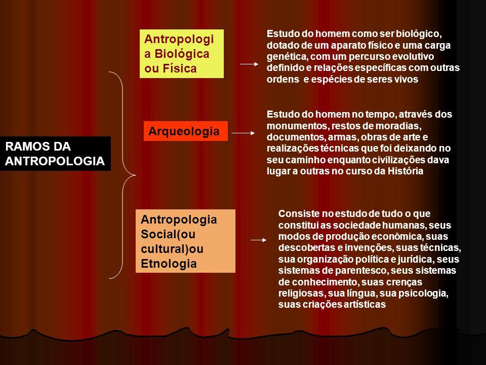 RAMOS DA ANTROPOLOGIA Antropologi a Biológica ou Física Estudo do homem como ser biológico, dotado de um aparato físico e uma carga genética, com um p
