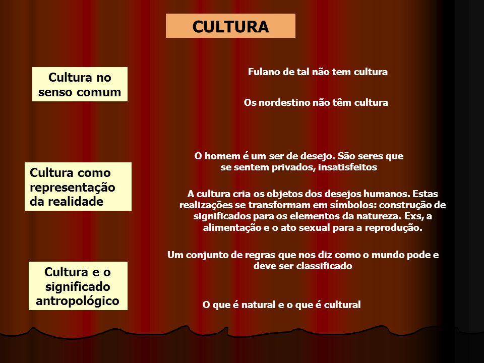 CULTURA Cultura no senso comum Cultura como representação da realidade Fulano de tal não tem cultura Os nordestino não têm cultura O homem é um ser de