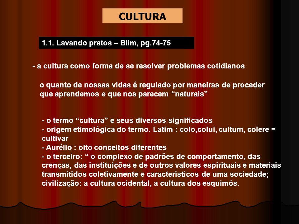 1.1. Lavando pratos – Blim, pg.74-75 - a cultura como forma de se resolver problemas cotidianos o quanto de nossas vidas é regulado por maneiras de pr
